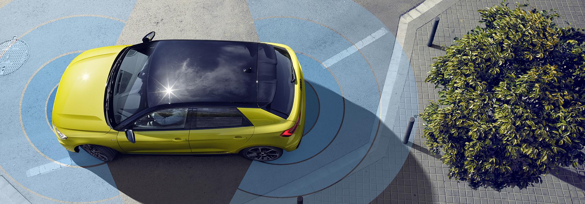 Rumen Audi na cesti kjer so narisani modri polkrogi. Na desni strani slike manjše drevo
