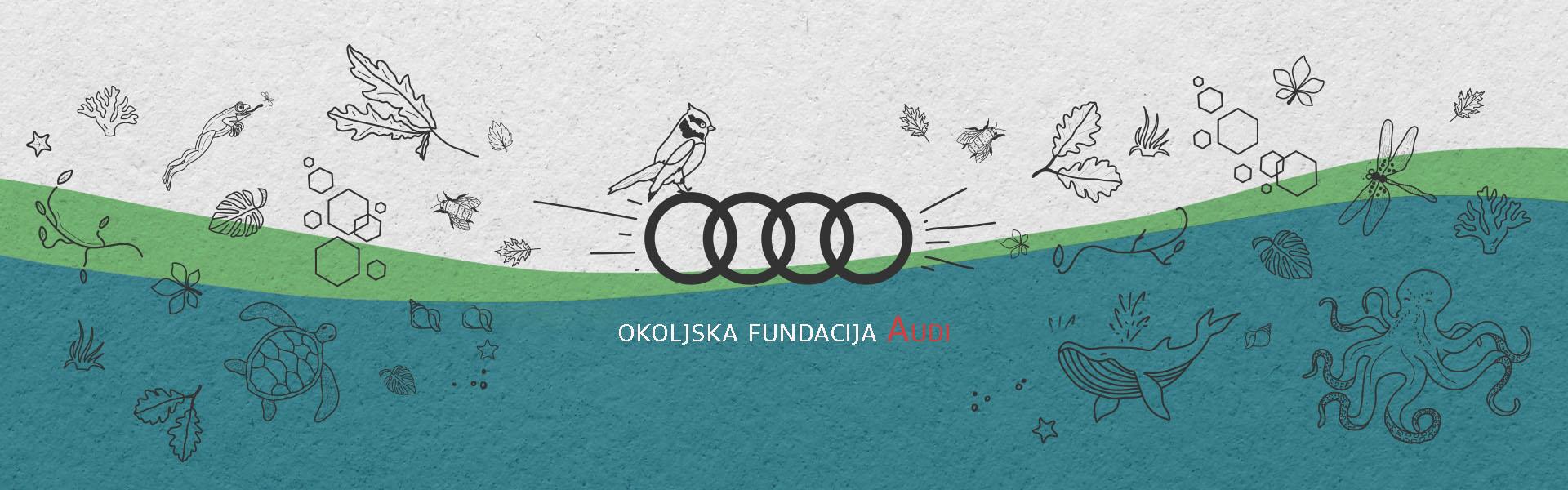 Belo, zeleno, modra slika z Audijevim logotipom in napisom Okoljska fundacija Audi
