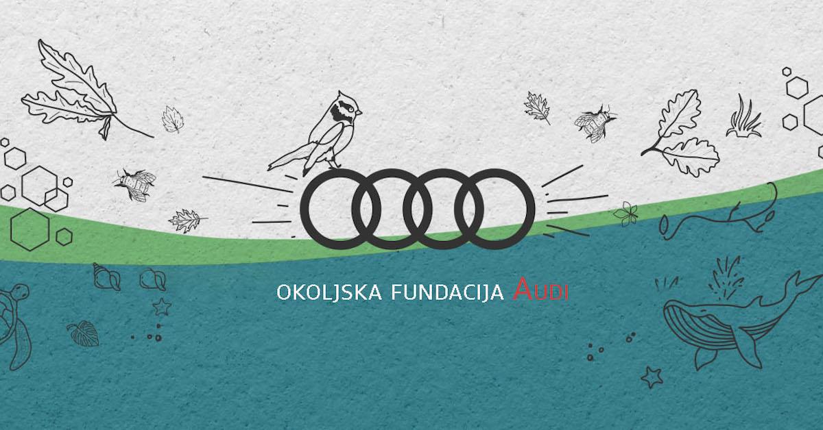 Grafika okoljske fundacije Audi z Audi logotipom. Na grafiki je ptič, ozadje je belo, modro in zeleno.