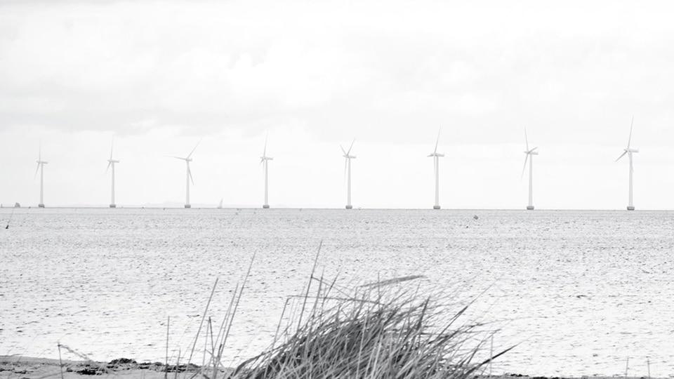 Črno-bela slika vetrnih turbin za elektriko, postavljene v morju.