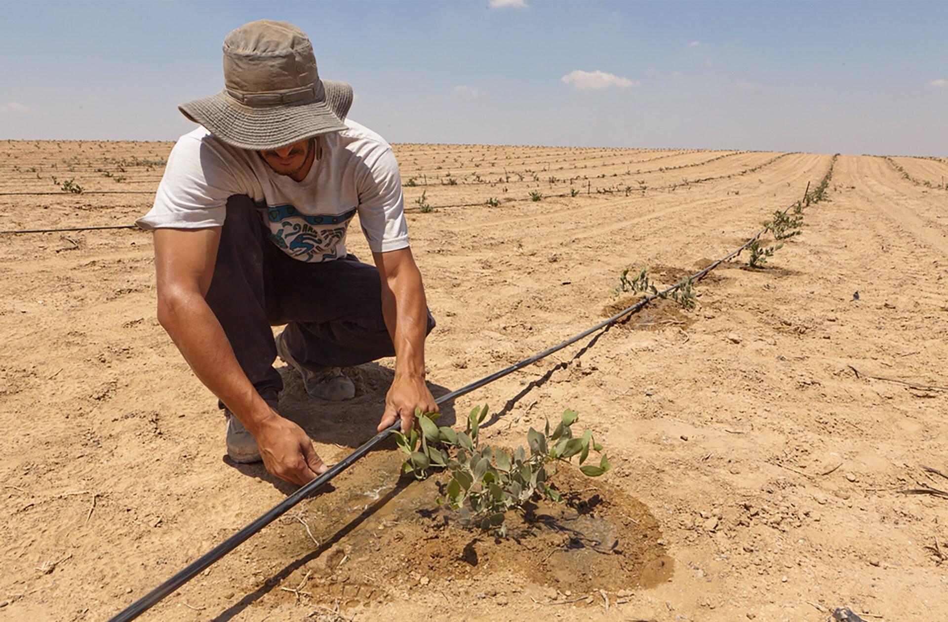 Netafim je v letu 1965 kot prvo podjetje uvedlo kapljično namakanje. S tem postopkom se majhni odmerki vode dovajajo neposredno v območje korenin rastlin. Tehnologija kapljičnega namakanja zmanjša porabo vode za do 70 %, kar je ob podnebnih spremembah pomemben prispevek k preživetju kmetov in malih gospodarjev po vsem svetu.